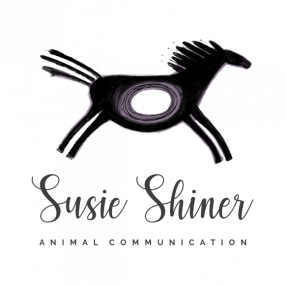 Animal Communication Logo - Susie Shiner
